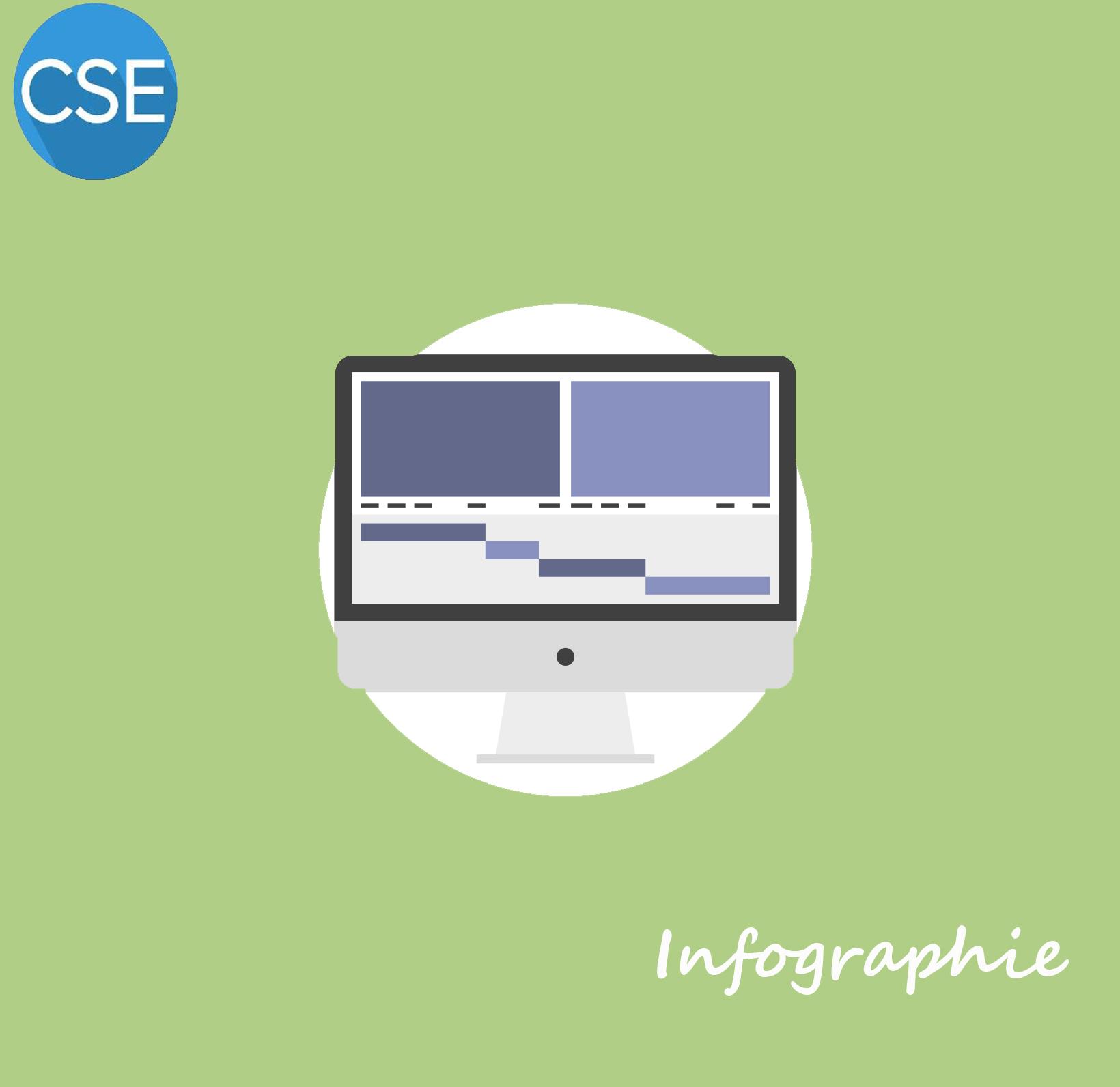 Les infographies du CSE